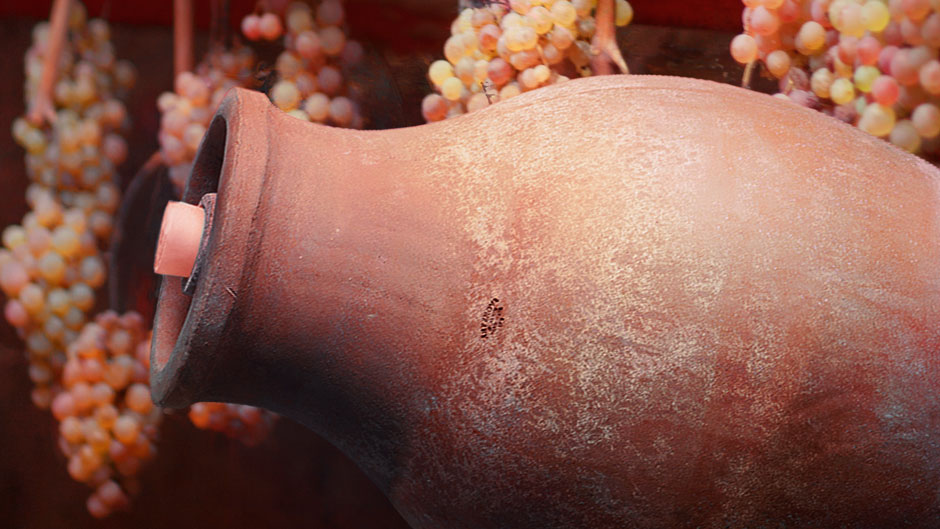Amphorae for Vinsanto