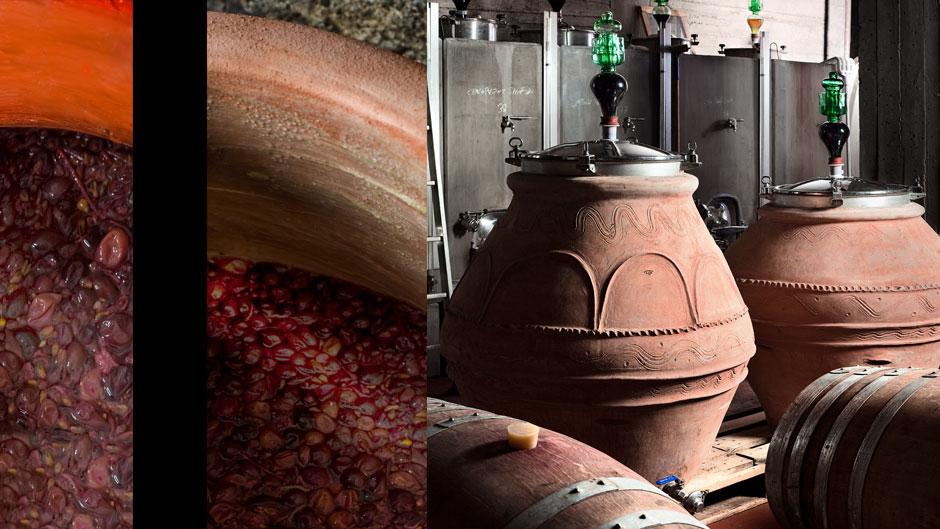artenova - terracotta-e-vino