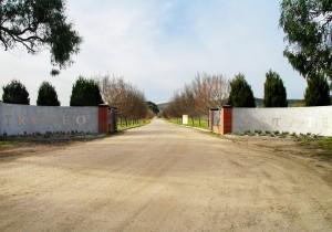 Trofeo Estate ingresso